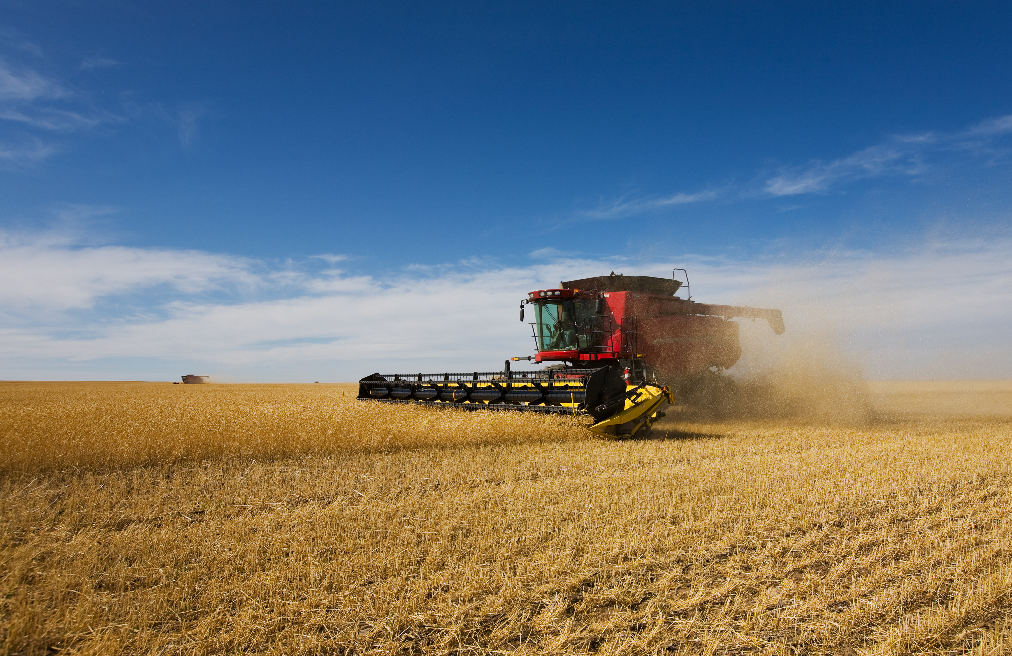 StockPhotography_Purchased_Photo_Agriculture_012